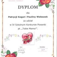 z_dyplom_13