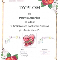 z_dyplom_17