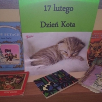 wystawa-kot
